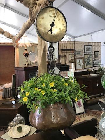 Salter Scales & Copper Pots