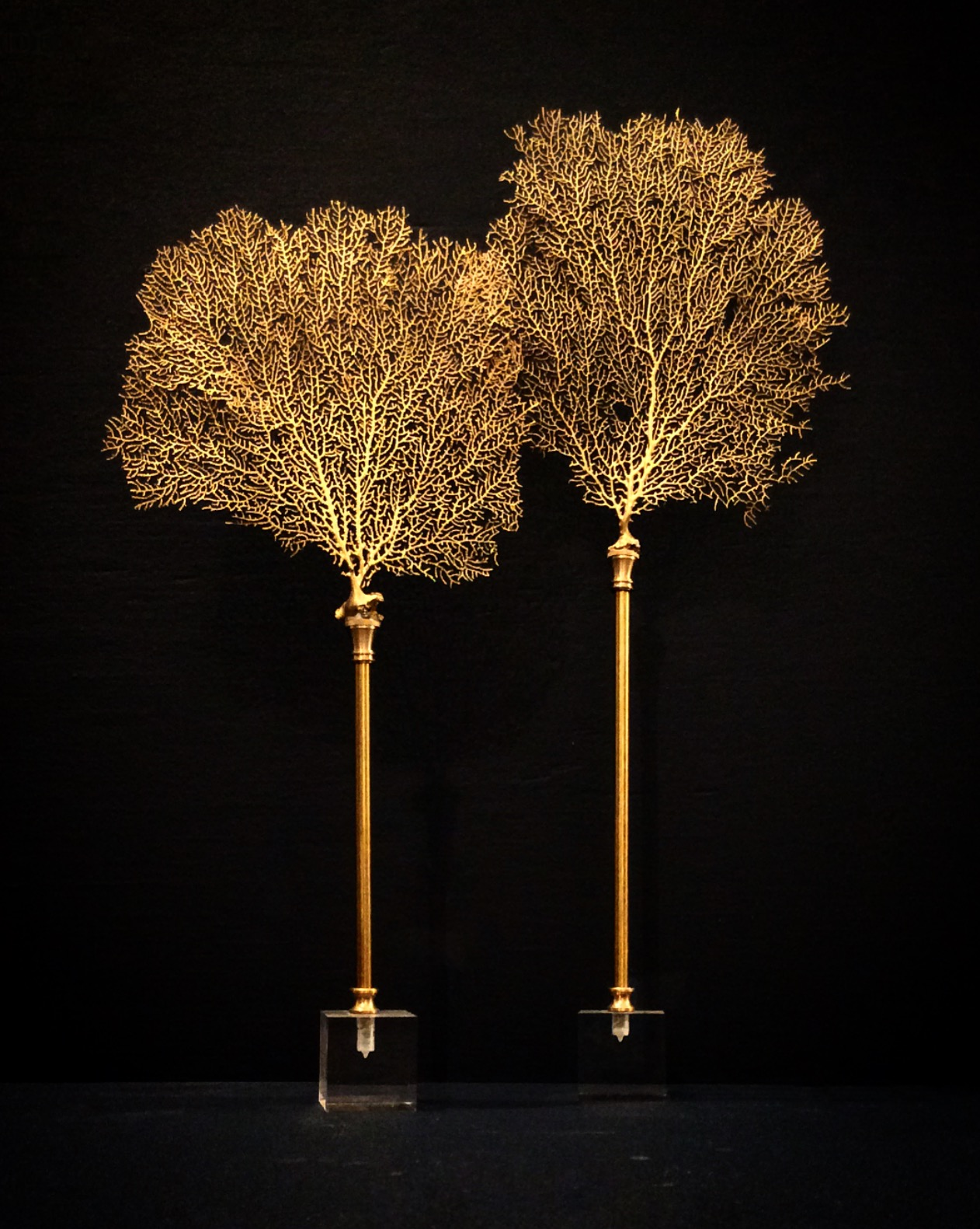 Seafan Pedestals with Brass