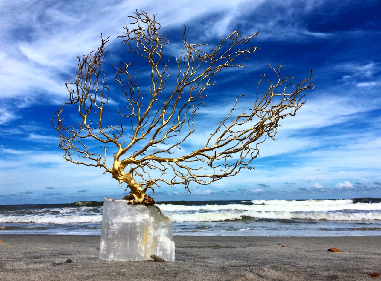 Selenite and Seafan Pedestal